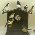 巣箱に集まる鳥たち